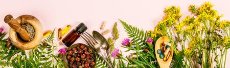 Concetto di erbe selvatiche e curative, piatto, vista dall'alto