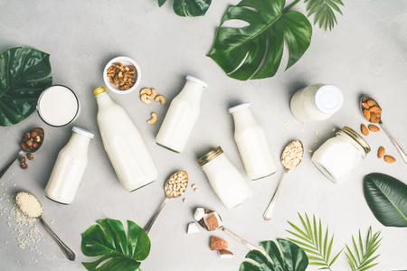 Milchfreie Milchersatzgetränke und Zutaten auf grauem Betonhintergrund, flach. Veganes, vegetarisches, sauberes Essenskonzept Standard-Bild