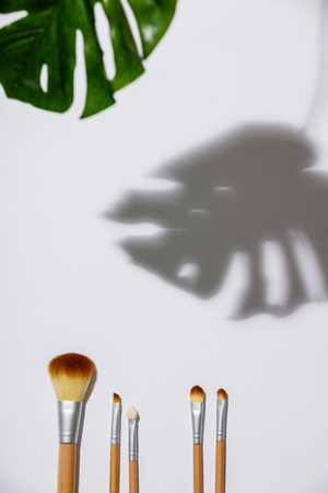 makeup brush and monstera leaves on a white background