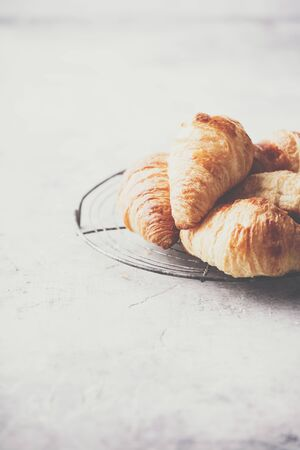 Fresh croissants on light grey concrete background Standard-Bild - 124959317