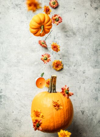 Levitating Pumpkin and Chrysanthemum against old concrete background