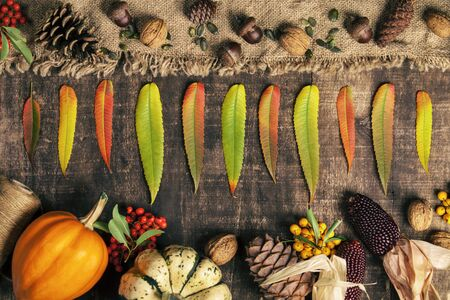 Autumn background - fallen leaves and healthy food on old wooden table