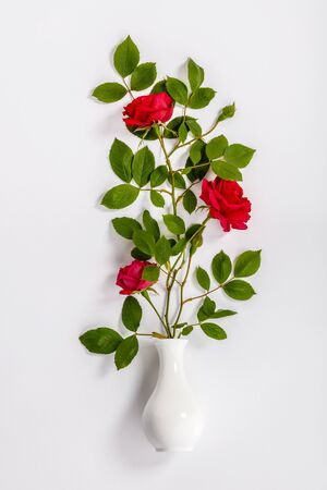 red roses and white vase on white background Stok Fotoğraf