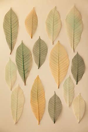 Artificial autumn leaves pattern, closeup, flat lay 免版税图像