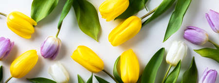 Easter floral background, various eggs end egg shell and tulips Reklamní fotografie