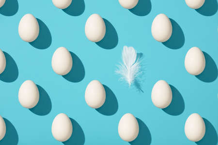 Pattern made of white eggs and bird feather on blue background Reklamní fotografie