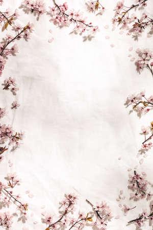Spring border with cherry blossoms on white linen napkin Reklamní fotografie