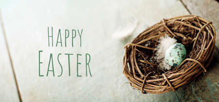 Easter composition with eggs and nest, banner Reklamní fotografie