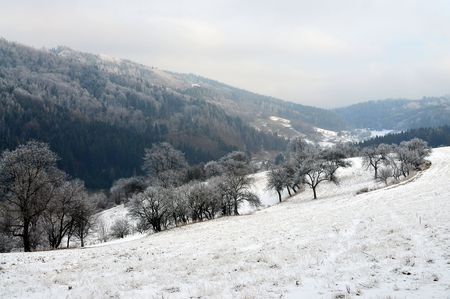 typical winter landscape in wallachia Stock Photo
