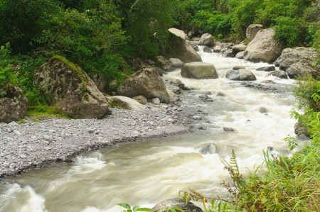 River in Rainforest in Argentina Stock Photo - 4490673