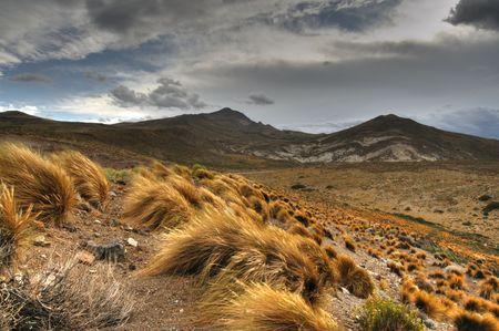 アルゼンチン、パタゴニアの草原