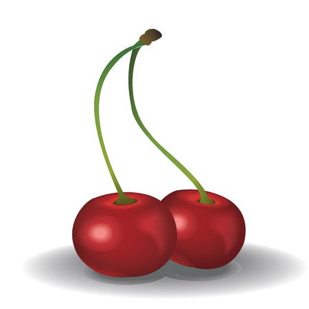 Red fresh cherry on white background. Ilustração
