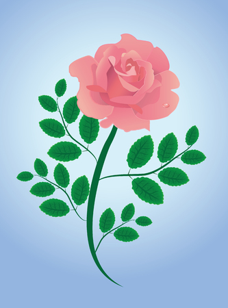 Pink  abstract illustrated vector rose with leaves