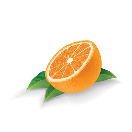Orange with leaves isolated on white background Ilustração