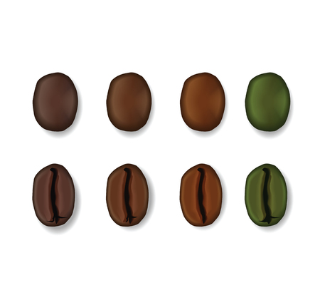Realistic set of coffee beans showing various stages of roasting. Ilustração