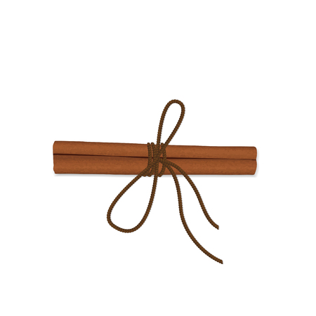 Realistic cinnamon with a rope Illustration