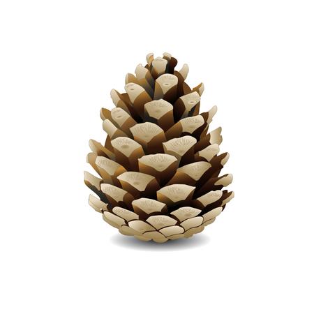 Pine cone icon.