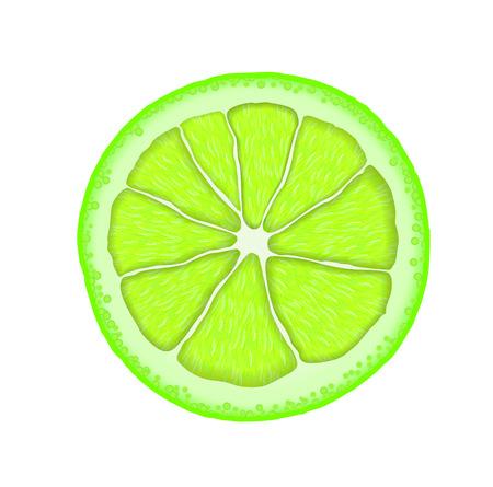 Realistic lime slice. icon. Иллюстрация