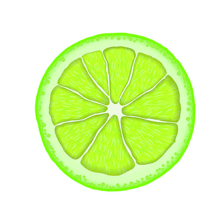 Realistic lime slice. icon. Illustration