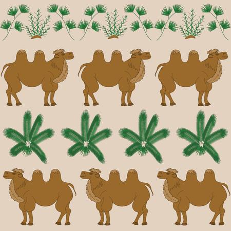 plantas del desierto: La comida favorita de camello es las plantas del desierto camello espina y otros Vectores