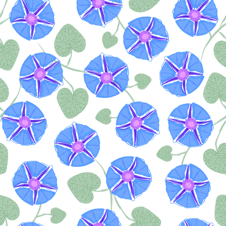 ipomoea: Seamless with flower Ipomoea, morning glory. Vector illustration without transparency