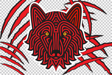 laceration: Animal claw scratches with wolf face, isolated on checkered background, good for t-shirt design, emblems, labels, stickers. Vector illustration Illustration