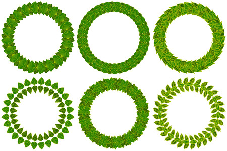 foliate: Foliate wreaths set. Green wreath made of different tree leaves. Vector illustration.