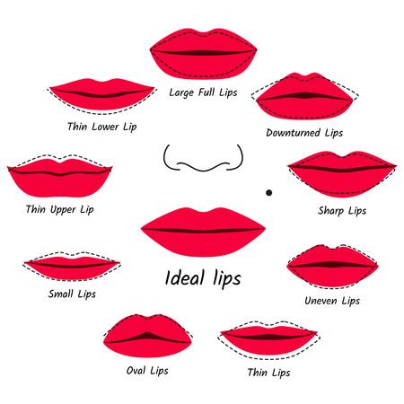 Corrective makeup for lips. Vector illustration. Illustration
