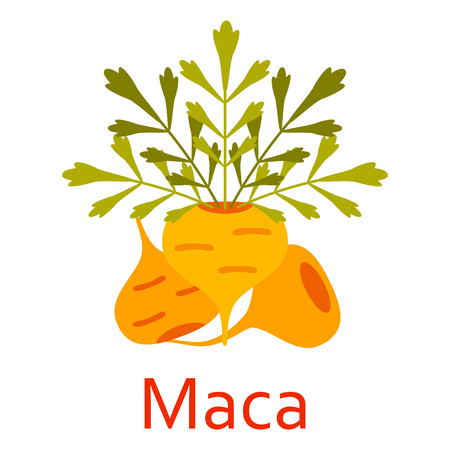Super food icon. Maca. Vector illustration.