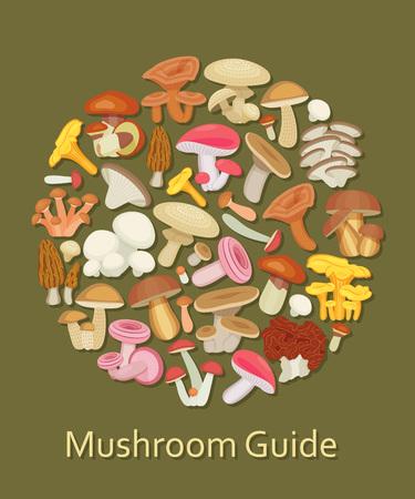 edible mushroom: Edible mushroom set. Flat icons. Round background. Vector illustration. Illustration