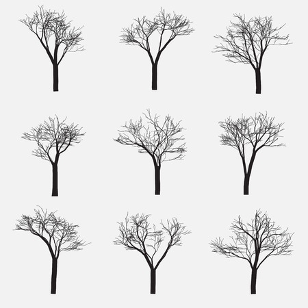 afar: Set of Silhouette of tree with bare branches, vector illustration