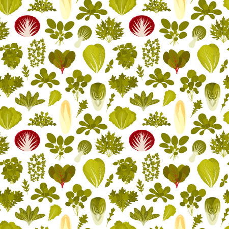 Seamless pattern with green salad plants. Food background. Vector illustration.