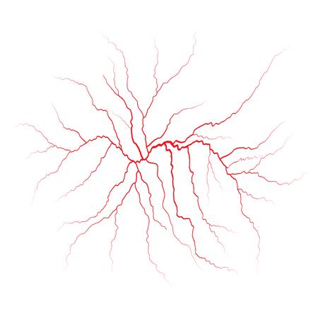 Red veins. Blood vessels and arteries illustration. Illustration