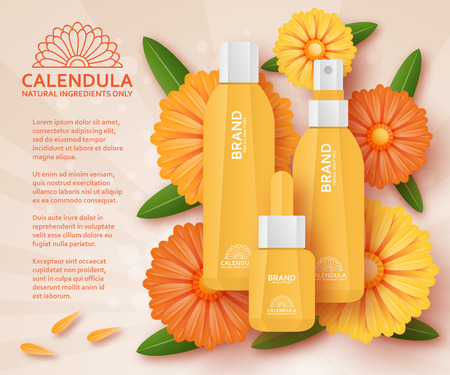 calendula: Natural cosmetic template with calendula. Vector illustration.