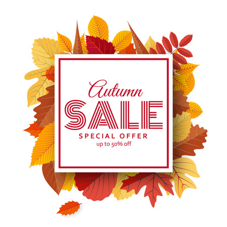 fall leaves: Autumn sale background template with bright leaves. Vector illustration