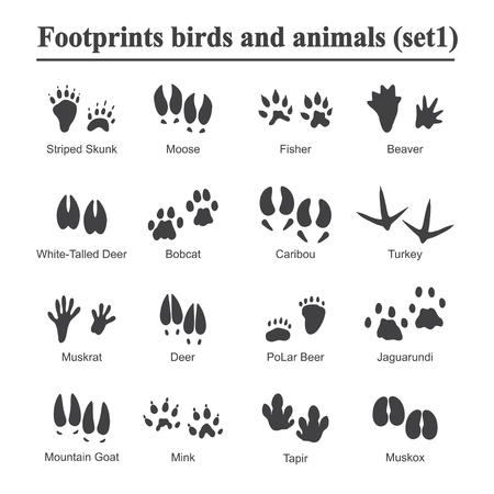 Tier- und Vogelabdruck der wild lebenden Tiere, Tiertatzendruck-Vektorsatz. Abdrücke der Vielzahl der Tiere, Illustration von schwarzen Schattenbildabdrücken. Vektorgrafik