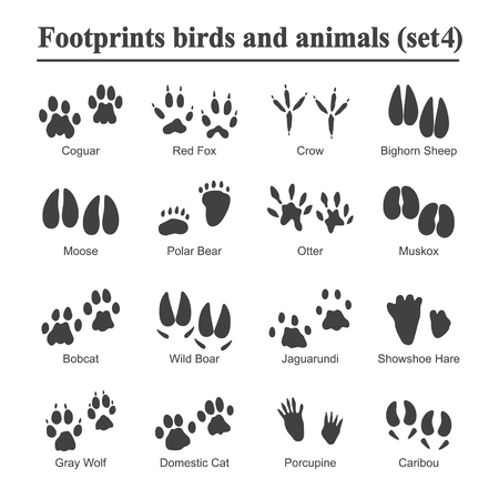 Wildlife animals and birds footprint, animal paw prints vector set. Footprints of variety of animals, illustration of black silhouette footprints. 版權商用圖片 - 96689084