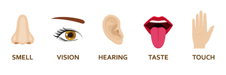 Five human senses icons set. Cartoon design nose, eye, hand, ear and mouth. Vector illustration. 스톡 콘텐츠 - 108509751