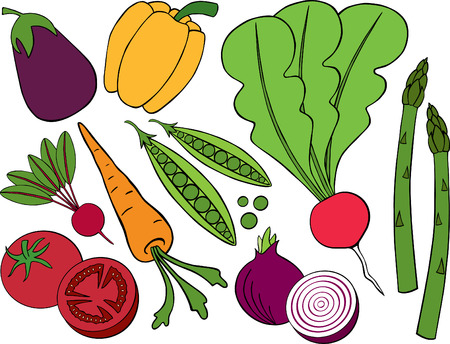 Vegetable Collection Illustration