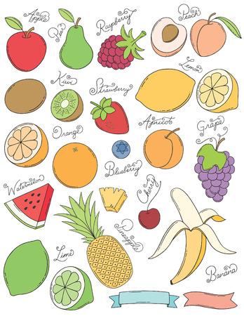 Hand Drawn Fruits Vettoriali
