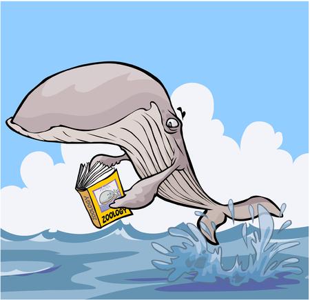 zoology: Cartoon Whale reading Zoology textbook.
