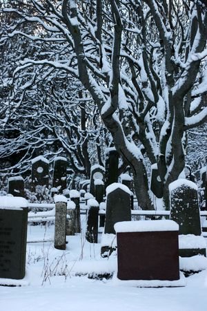 afterlife: Old graveyard covered in snow during the wintermonths