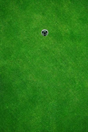 Beautiful golf green seen from above Stock Photo - 430930