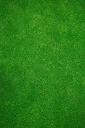 recently: Top view of a healthy and and recently cut grass