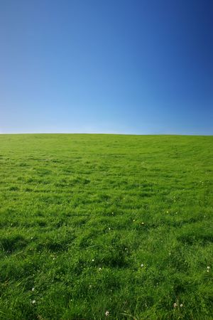 Beautiful green meadow on a clear summer day - plenty of copy space Stock Photo - 640534