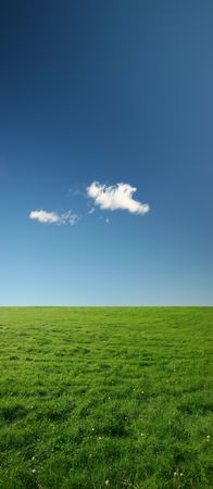 Beautiful green meadow on a clear summer day - plenty of copy space Stock Photo - 640533