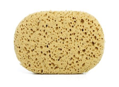 Sponge isolated on white photo
