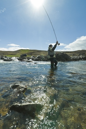 wade: Fly fisherman casting the fly in beautiful surroundings in Iceland