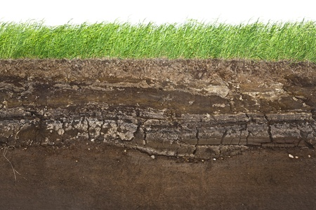 Cross section of green grass and underground soil layers beneath photo