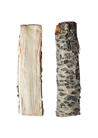 bark texture: Chopped up firewood isolated in studio Stock Photo